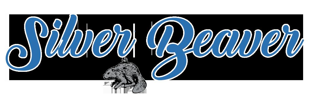 Calendar - 2020 Silver Beaver Nominations Due - 8/1/2020 — Heart
